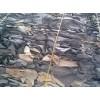 工业胶原料供应-碎皮的特性