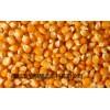 酿造企业求购高粱大米玉米小麦碎米糯米等