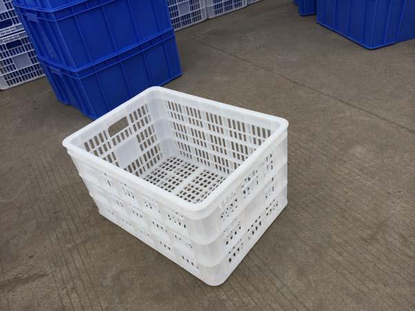湛江塑料蔬菜筐胶筐胶桶厂家
