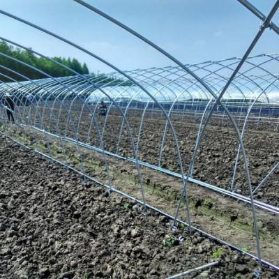 达威遮阳大棚 质量可靠 遮阳棚 连栋温室大棚 温室大棚骨架