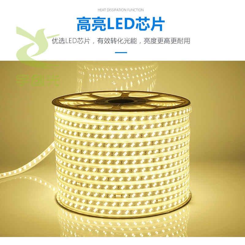 厂家定制可调色温养殖场软灯条120灯高显指高亮LED灯带