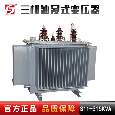 S11-315KVA 10/0.4KV 三相油浸式配电变压器