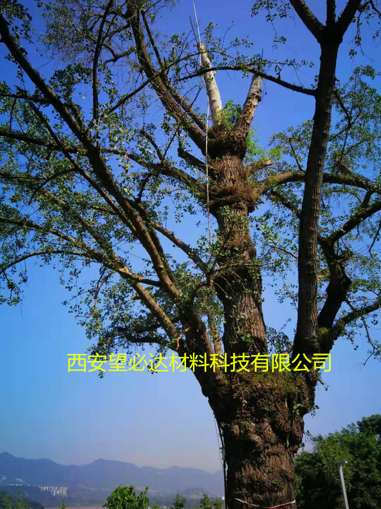 西安望必达定制古树避雷针5-25米 重量轻 强度高 抗腐蚀